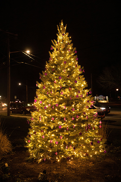 NYCBS Hosts Tree of Hope Lighting Ceremony Post Image